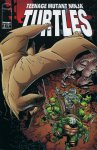 Обложка комикса Черепашки-Ниндзя №5