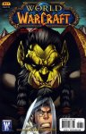 Обложка комикса World of Warcraft №17